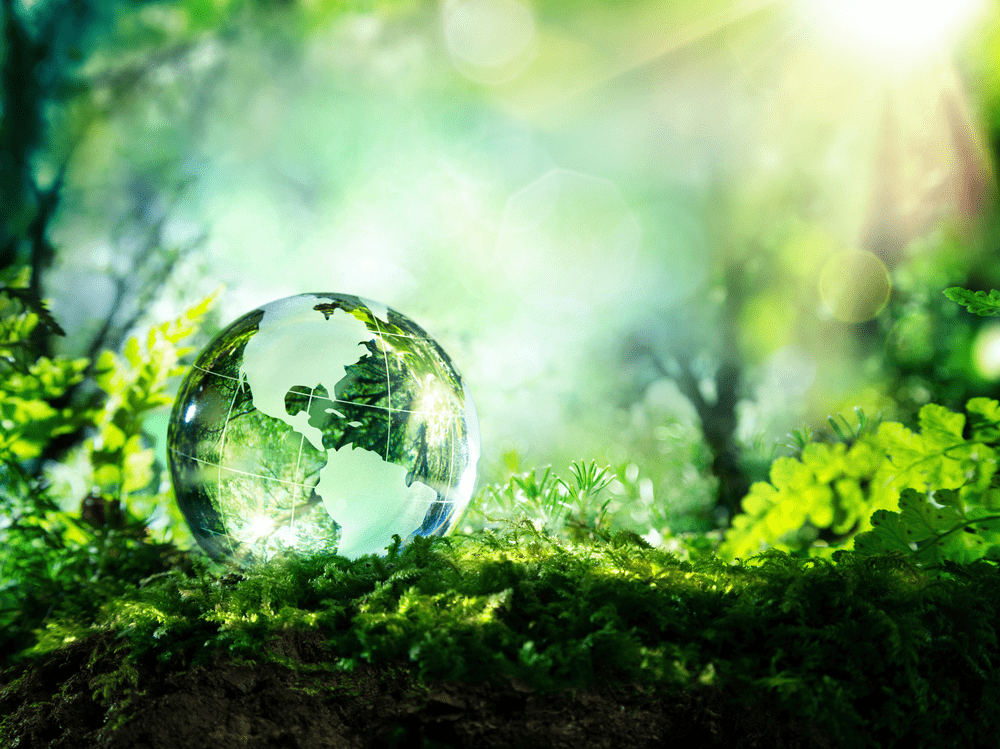 VIdro reciclável